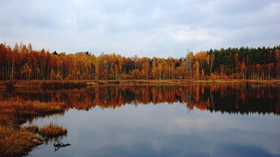 Озеро Щепкино Болото - Карта